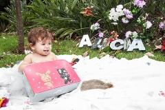Alícia